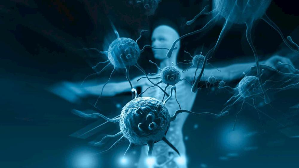 Tăng cường hệ miễn dịch